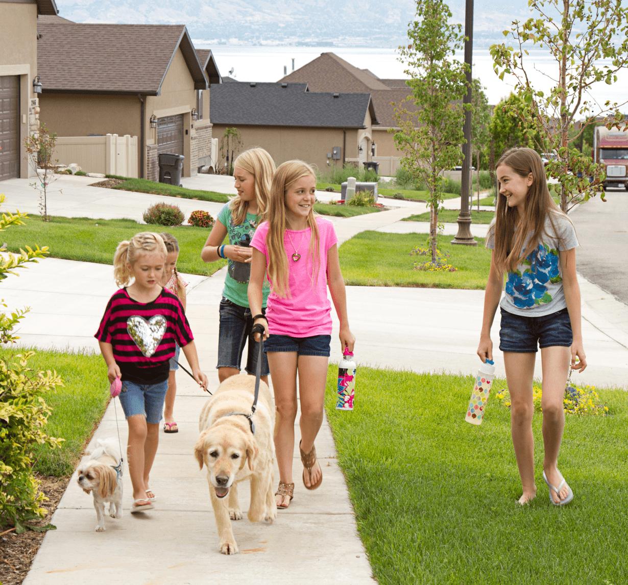 Community Spotlight Legacy Dogs Image