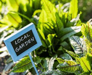 Community Spotlight Legacy Garden Image
