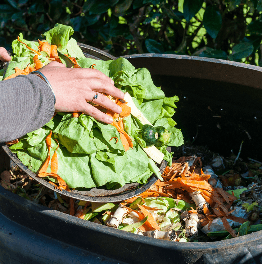 9 Ways to Save When Landscaping Your Yard Composting Image