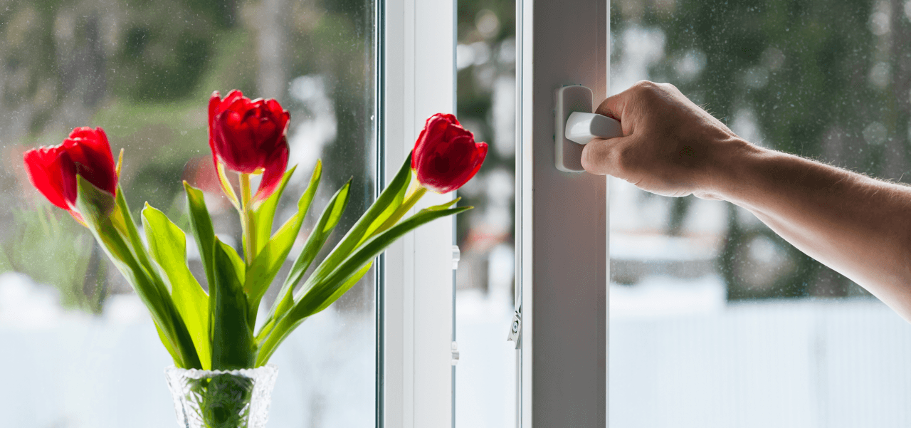 Spring Ahead With Our Home Maintenance Tips Tulips Featured Image